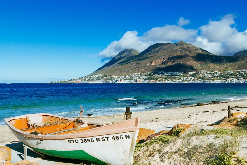 Guided Shore Dives in False Bay Cape Town with Pisces Divers